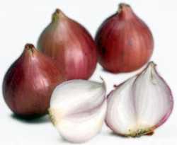 Gambar Bawang Merah atau Brambang - Manfaat Bawang Merah untuk Kesehatan