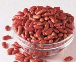 Gambar Kacang Merah - Manfaat Kacang Merah untuk Kesehatan