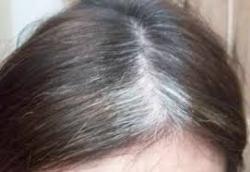 Gambar Rambut Beruban