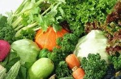 Gambar Sayuran Hijau. Manfaat Sayuran Hijau