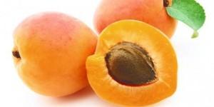 Gambar Buah Aprikot. Kandungan Nutrisi dan Gizi dalam Buah Aprikot