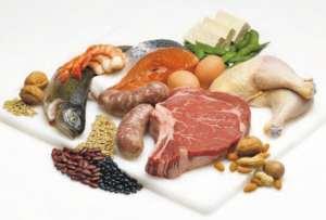 Makanan Sumber Protein