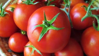 Manfaat Buah Tomat untuk Mencegah Stroke