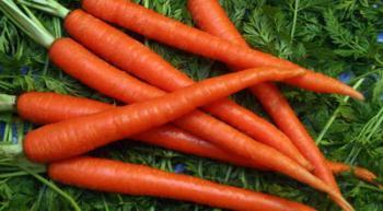 manfaat wortel untuk kesehatan pria