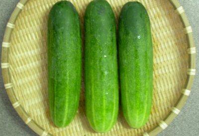 manfaat buah dan sayur mentimun