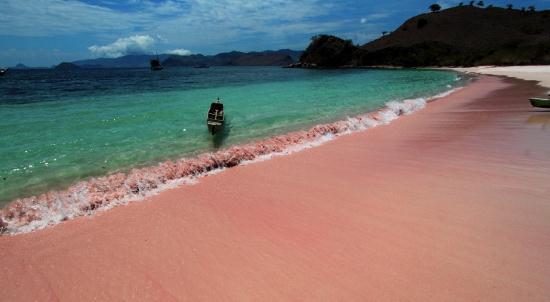 Foto Pantai Pink di Pulau Komodo, NTT