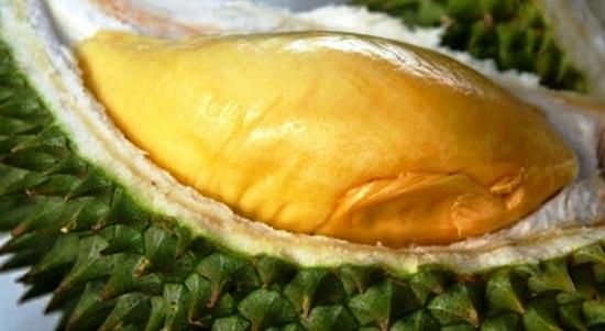 Gambar Buah Durian yang Enak dan Manis Rasanya